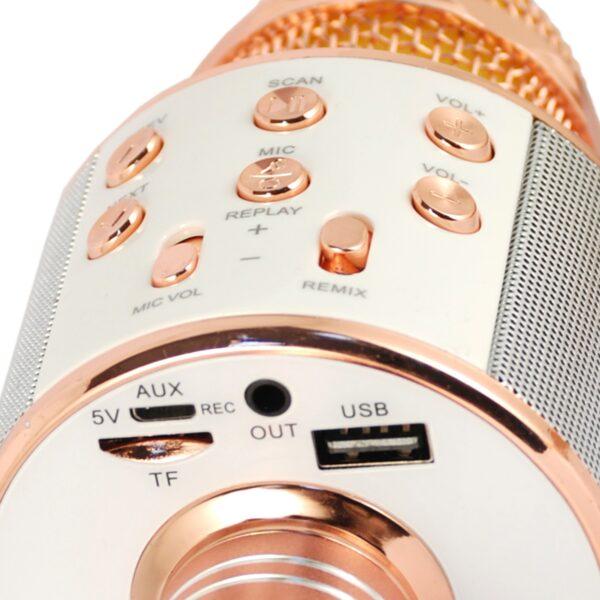 XTREME Microfono Karaoke - ARIETE INFORMATICA - Marche Unisex 12+ Anni, 5-8 Anni, 8-12 Anni ALTRI