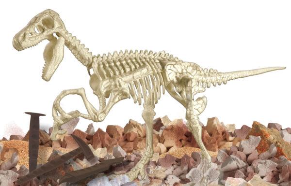 Piccolo genio Scava e Scopri Velociraptor - Piccolo Genio - Toys Center ALTRI Unisex 12+ Anni, 5-7 Anni, 5-8 Anni, 8-12 Anni PICCOLO GENIO