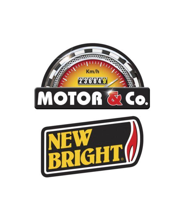 MOTOR & CO.  AUTO R/C BUGGY POLARIS