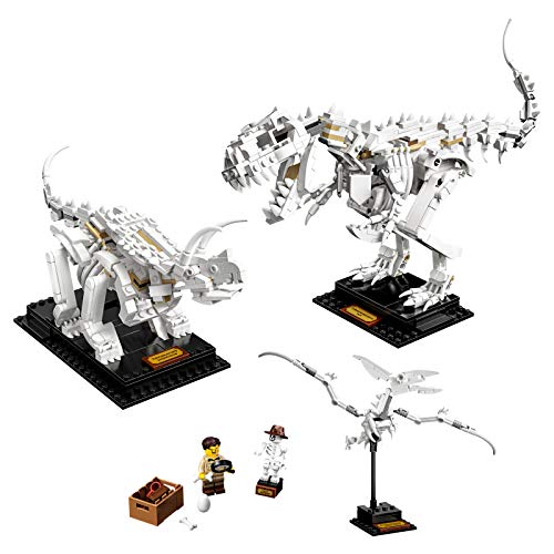 LEGO Ideas Fossili di dinosauro - 21320    Ideas