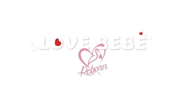 REBORN WITH CARRYCOT   LOVE BEBÈ
