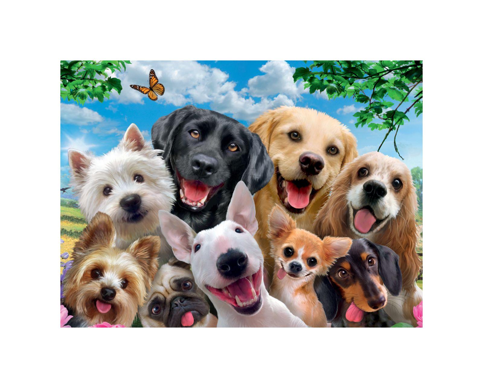 Ravensburger - puzzle 300 pezzi xxl - selfie canino - Ravensburger1
