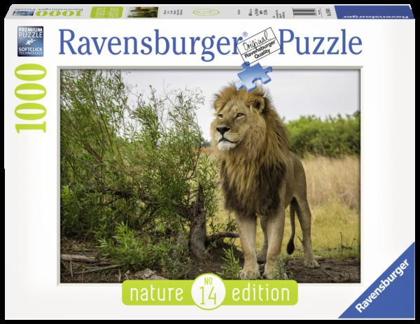 RAVENSBURGER PUZZLE 1000 PEZZI - RE DEI LEONI Ravensburger1