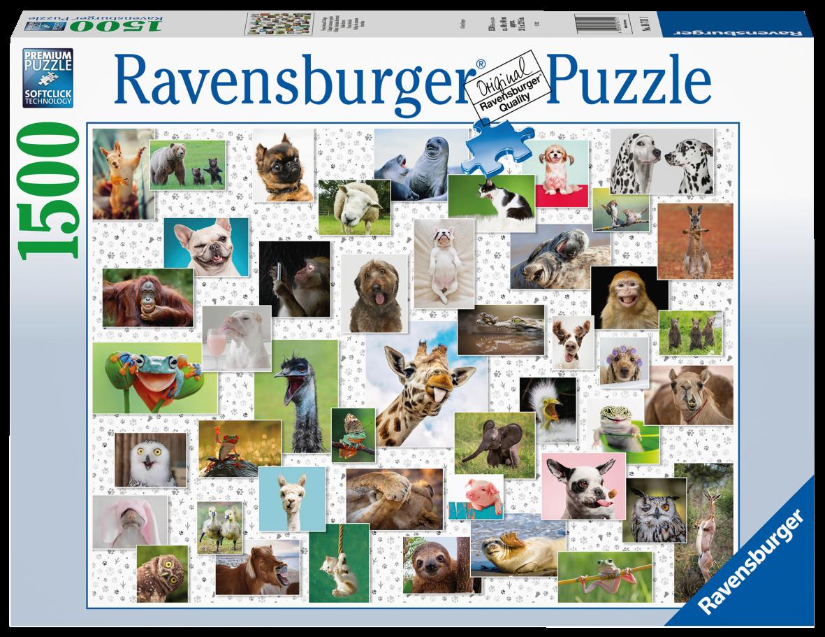 Ravensburger 1500 pezzi - collage di animali divertenti - Ravensburger1