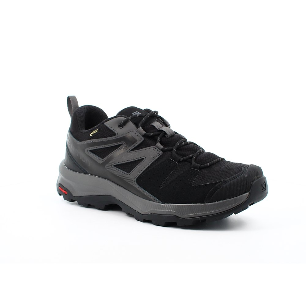 Salomon X Radiant Goretex Black buy and offers on Trekkinn