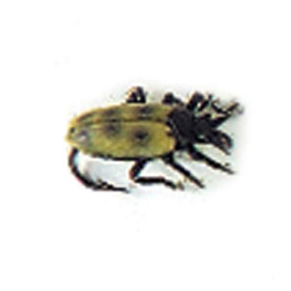 evia-ladybug-one-size