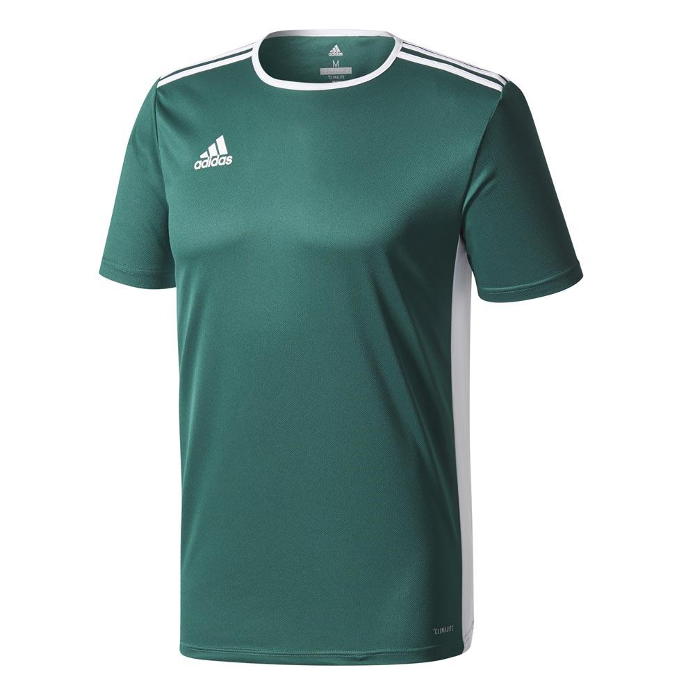 Adidas T-shirt Manche Courte Entrada 18 116 cm Collegiate Green / White