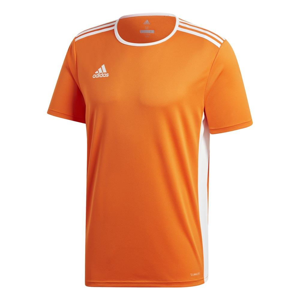 Adidas Entrada 18 XL Orange / White
