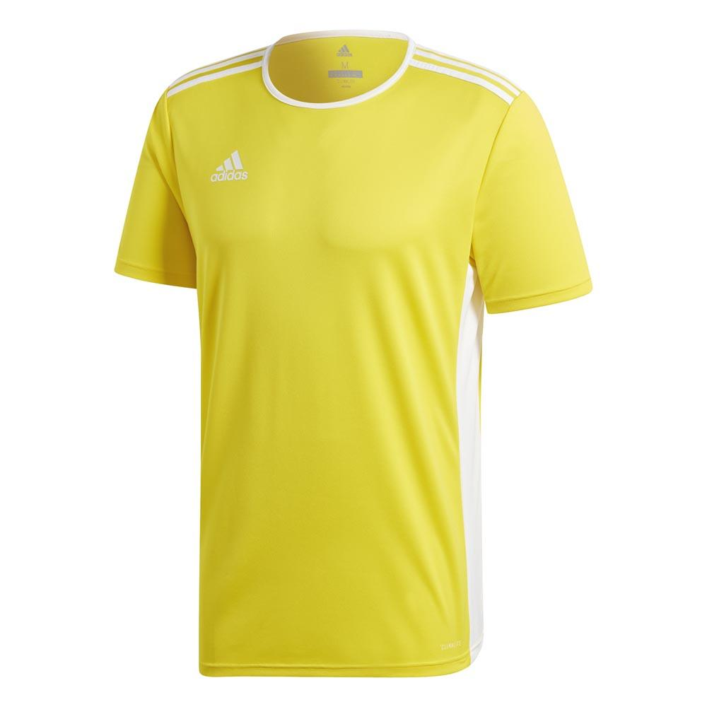 Adidas Entrada 18 M Yellow / White