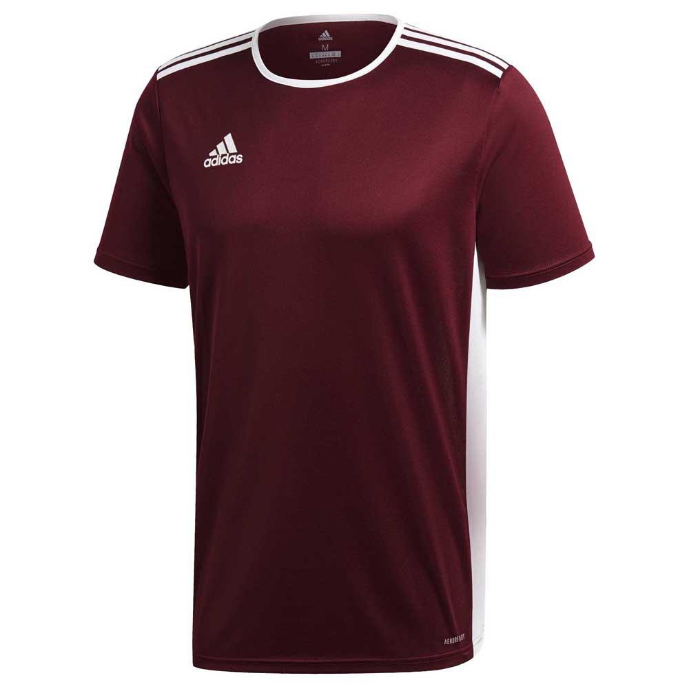 Adidas T-shirt Manche Courte Entrada 18 128 cm Maroon / White