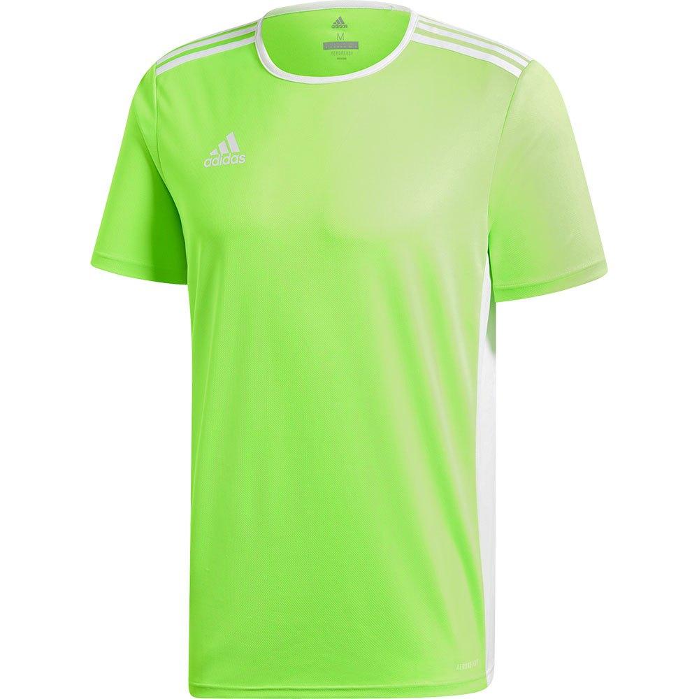 Adidas T-shirt Manche Courte Entrada 18 M Solar Green / White