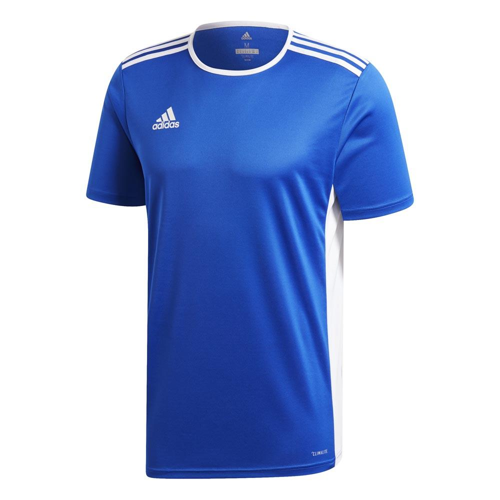 Adidas T-shirt Manche Courte Entrada 18 XXXL Bold Blue / White