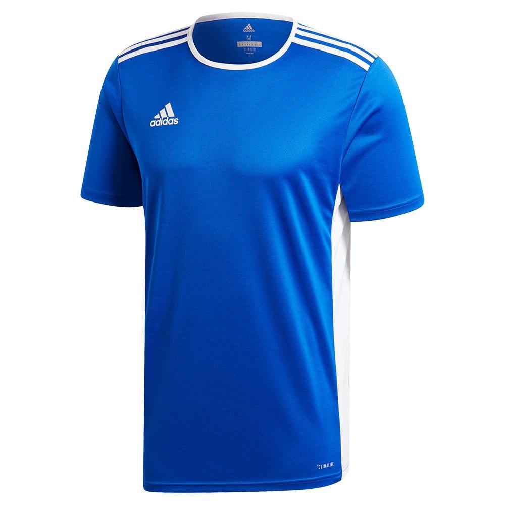 Adidas T-shirt Manche Courte Entrada 18 116 cm Bold Blue / White