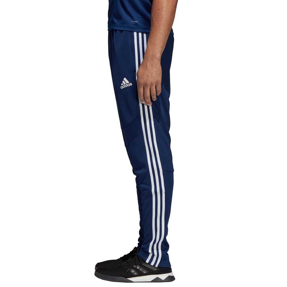 Adidas Tiro 19 Training Blau T78702 Hosen Mann Blau , Hosen