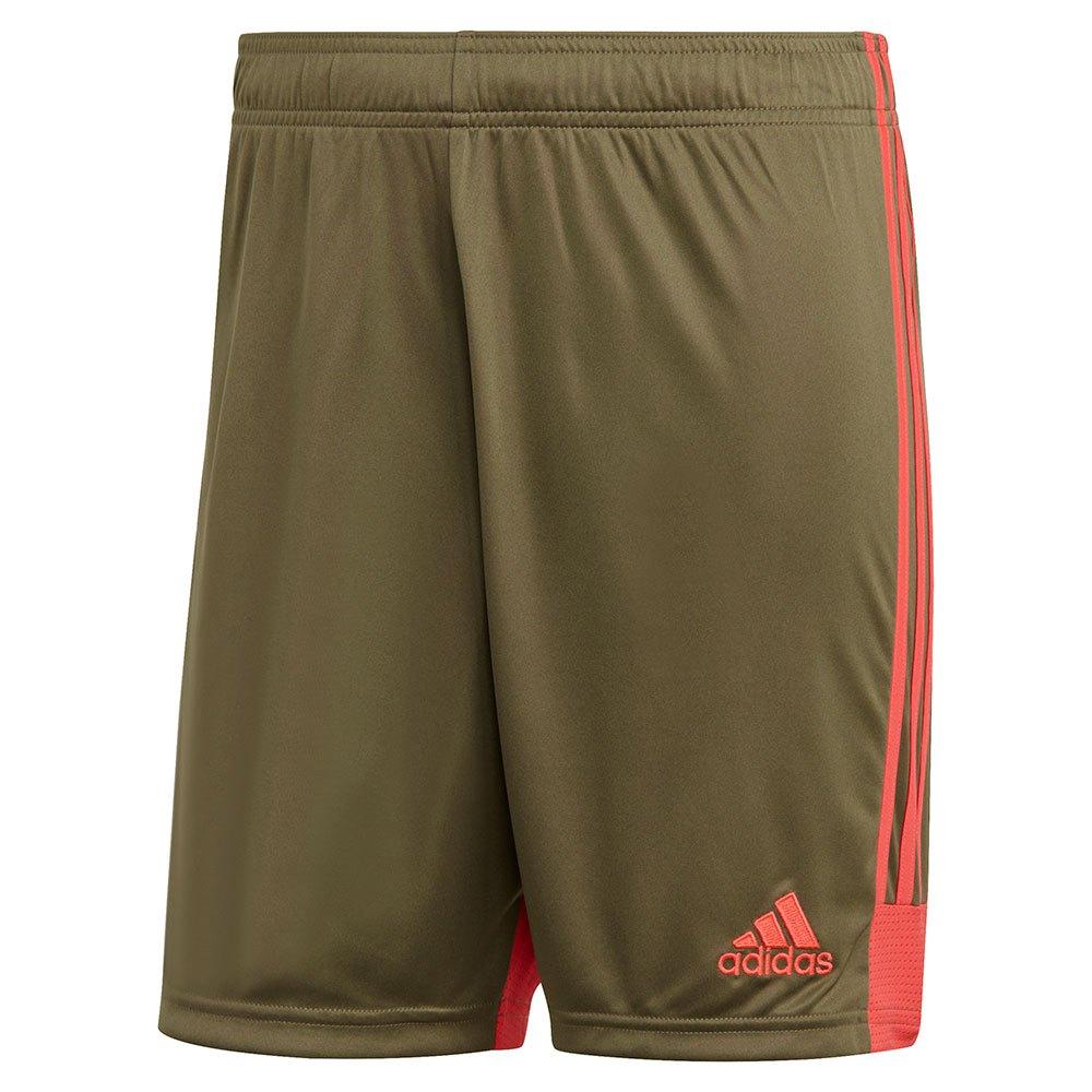 Adidas Short Tastigo 19 XL Raw Khaki / Shock Red