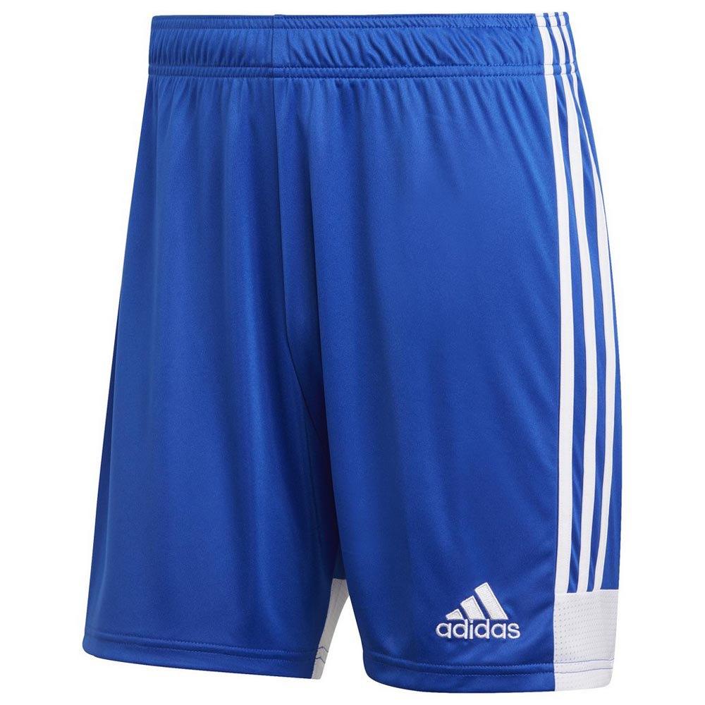 Adidas Tastigo 19 XXL Bold Blue / White