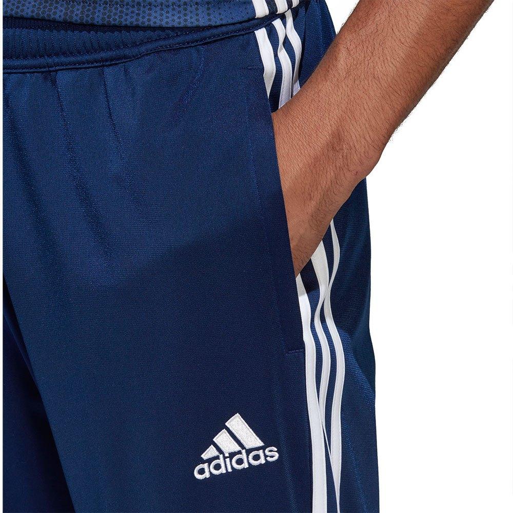 rescate ruptura Despertar  Adidas Tiro 19 Pes Pants Regular Blue T94776/ Pants Male Blue ...