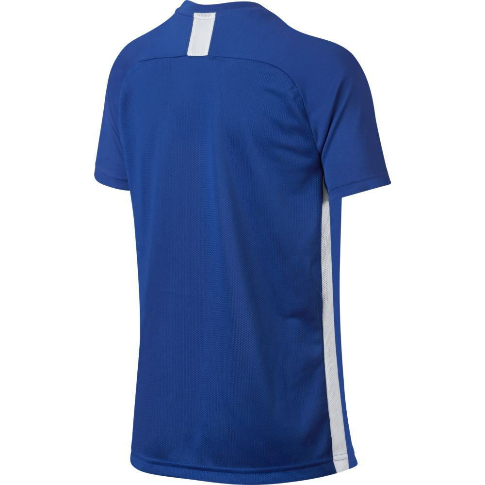 t-shirts-dri-fit-academy
