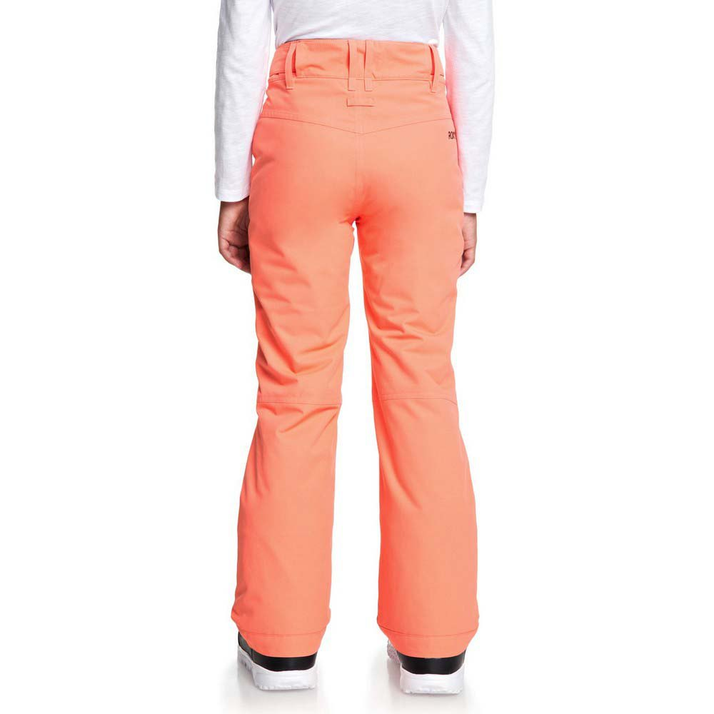 Roxy-Backyard-Pt-Orange-T46766-Hosen-Mann-Orange-Hosen-Roxy-skifahren Indexbild 5