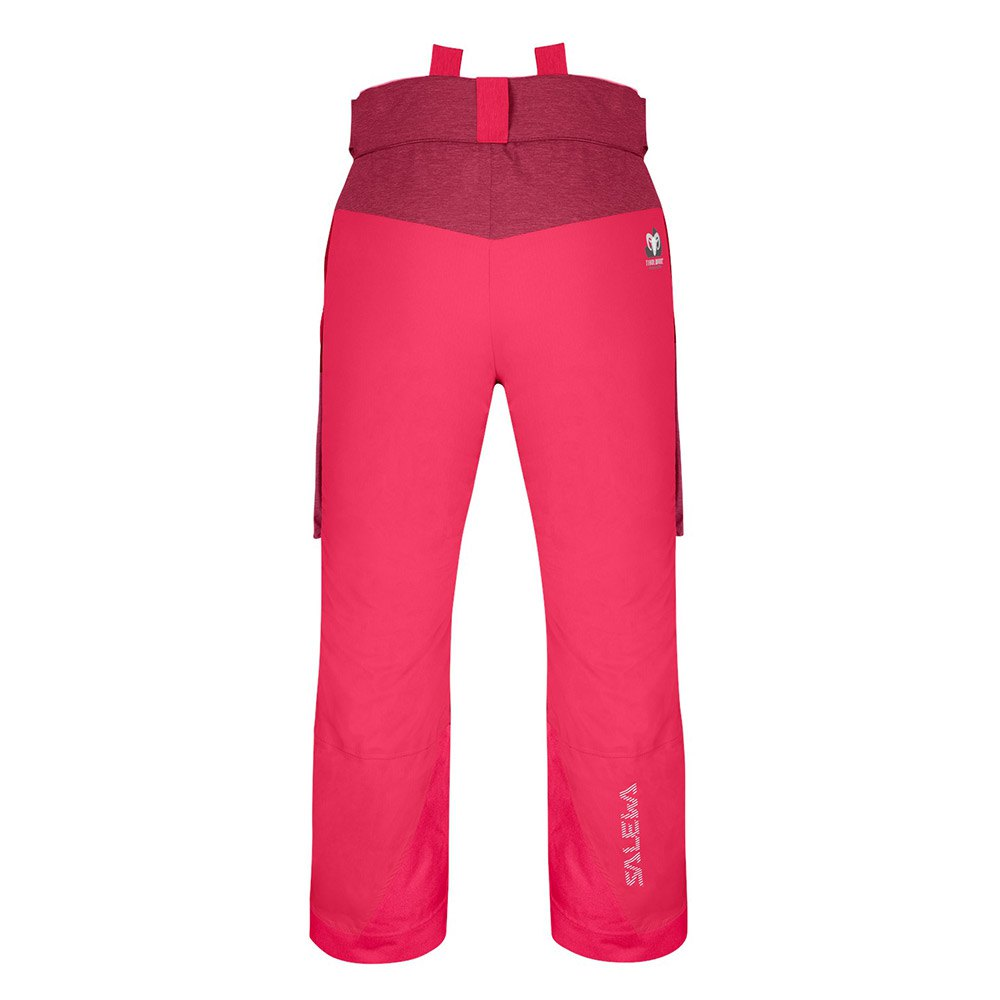 Salewa-Antelao-Ptx-Twc-Pink-T61894-Pants-Male-Pink-Pants-Salewa-outdoor thumbnail 4
