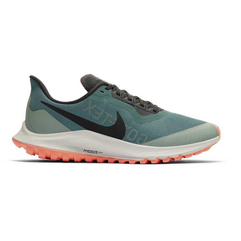 Nike Zoom Pegasus 36 Trail Goretex EU 42 Bicoastal / Off Noir / Silver Pine