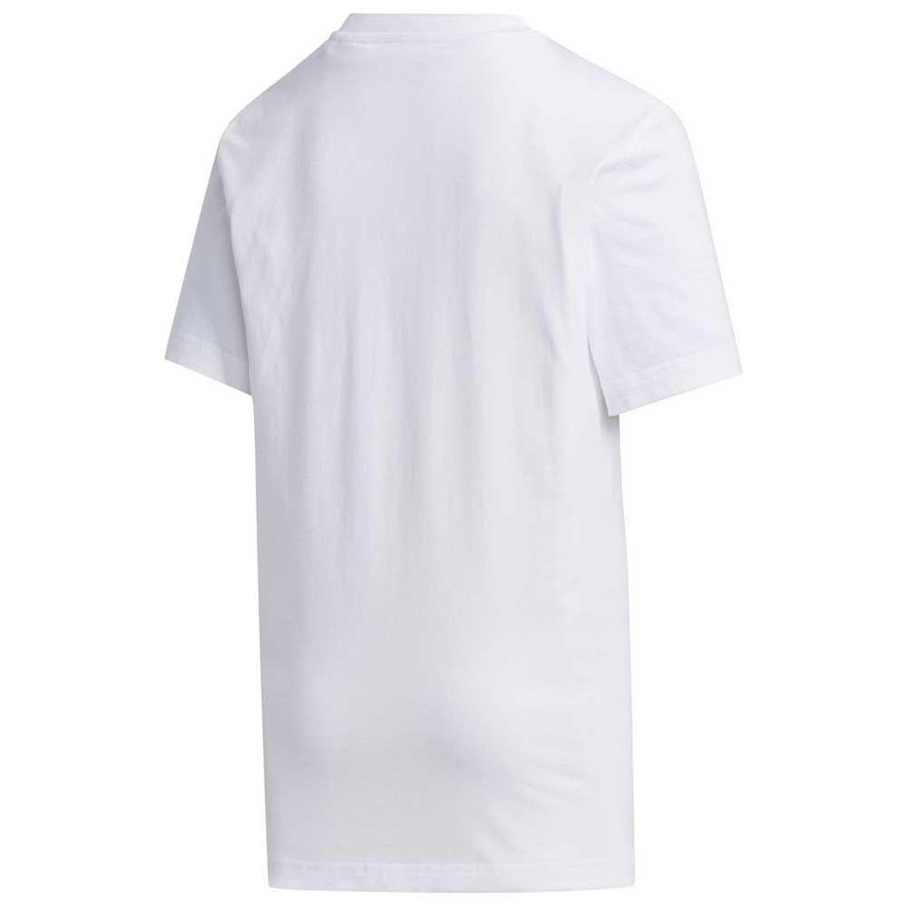 t-shirts-box