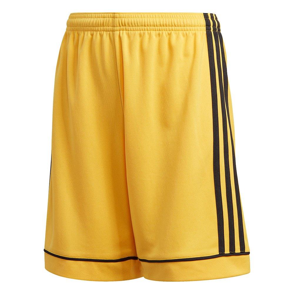 Adidas Short Squadra 17 176 cm Bold Gold / Black
