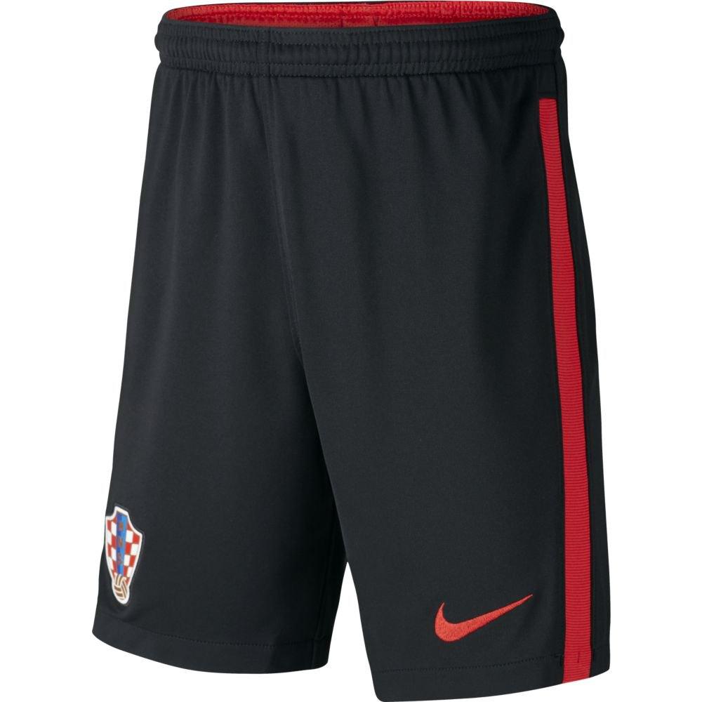 Nike Le Short Croatie Breathe Stadium 2020 Junior L Black / University Red