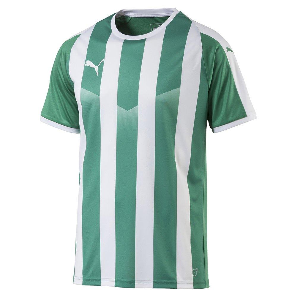 Puma T-shirt Manche Courte Liga Striped S Pepper Green