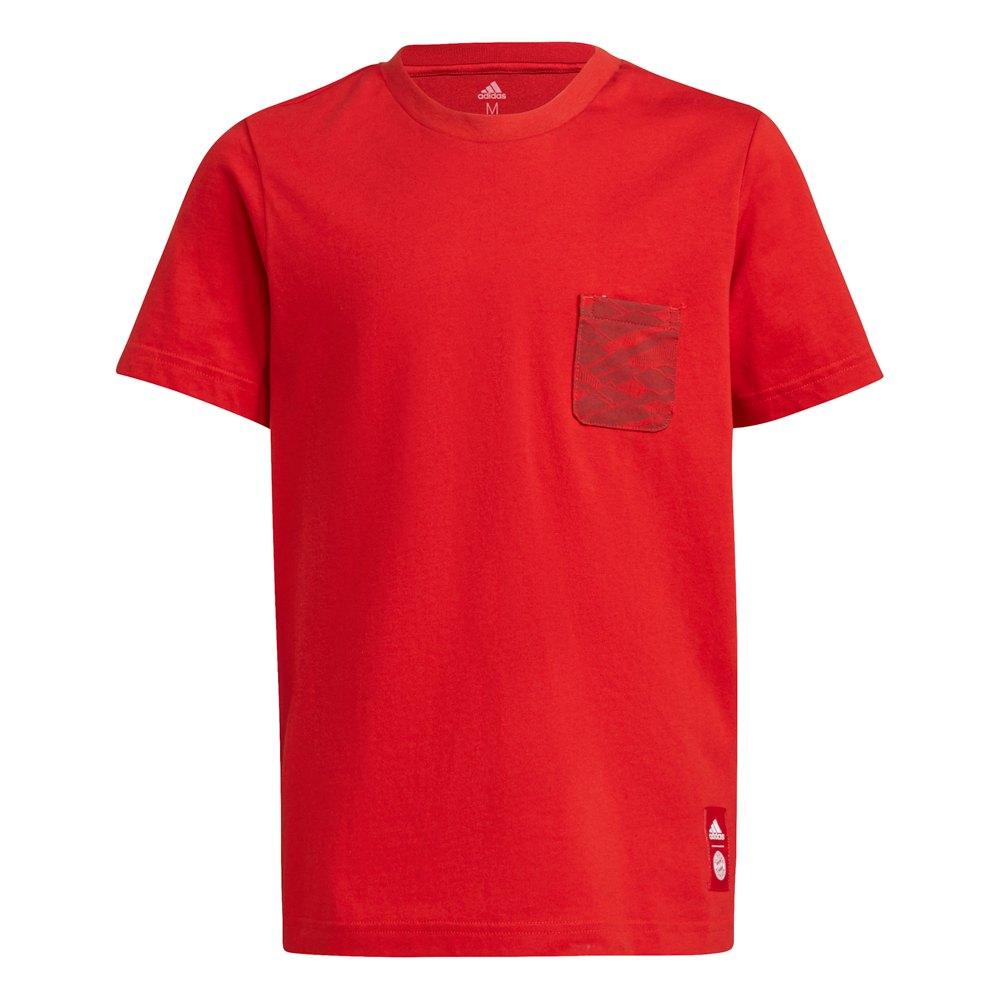Adidas T-shirt Fc Bayern Munich 21/22 Junior 128 cm Fcb True Red