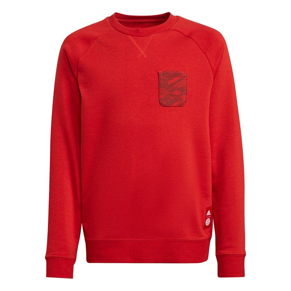 Adidas Sweat-shirt Fc Bayern Munich 21/22 Junior 164 cm Fcb True Red