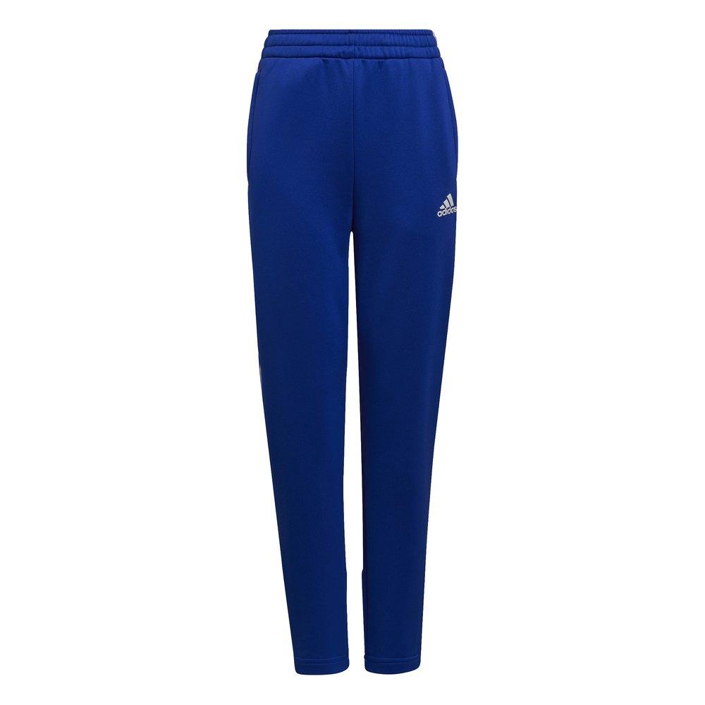 Adidas Pantalons Ar 3 Striker 152 cm Bold Blue / White