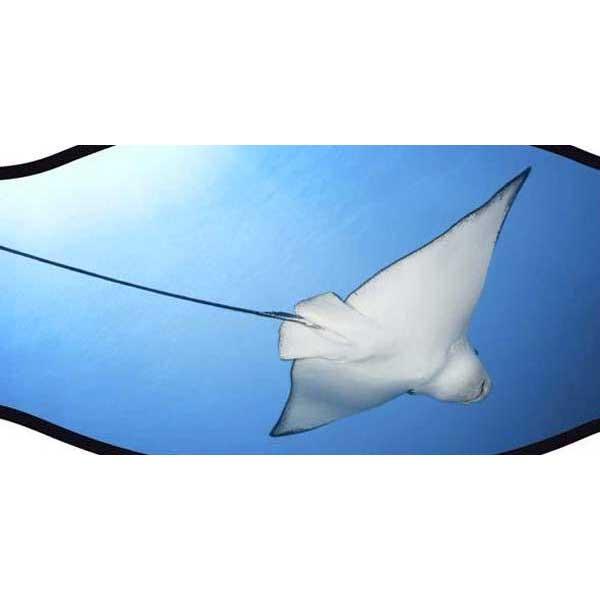 best-divers-neoprene-mask-strap-double-velcro-one-size-manta