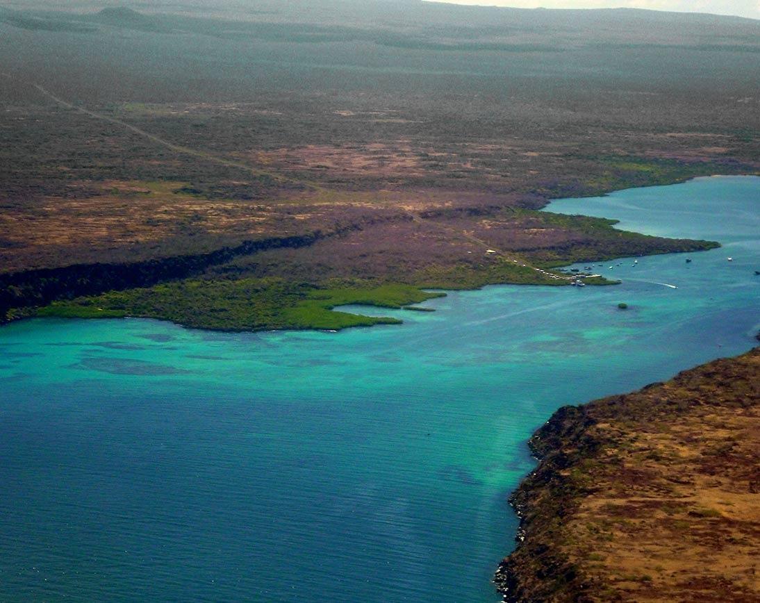 Baltra | Galapagos Islands | South America Travel