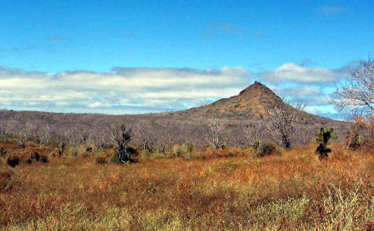 Galapagos islands | Dragon Hill