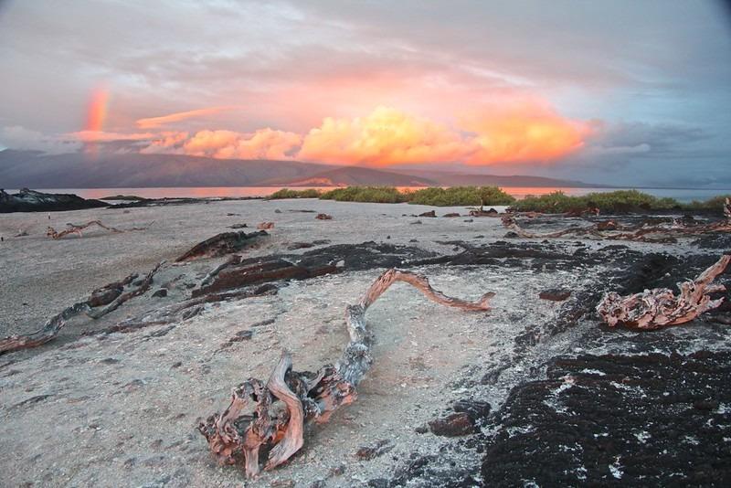 Espinoza Point | Galapagos Islands