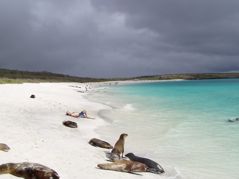 Galapagos Vacations in Style Southern Islands liveaboard trip