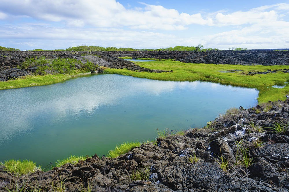 Galapagos Islands 6 day liveaboard tour West islands Alya Catamaran