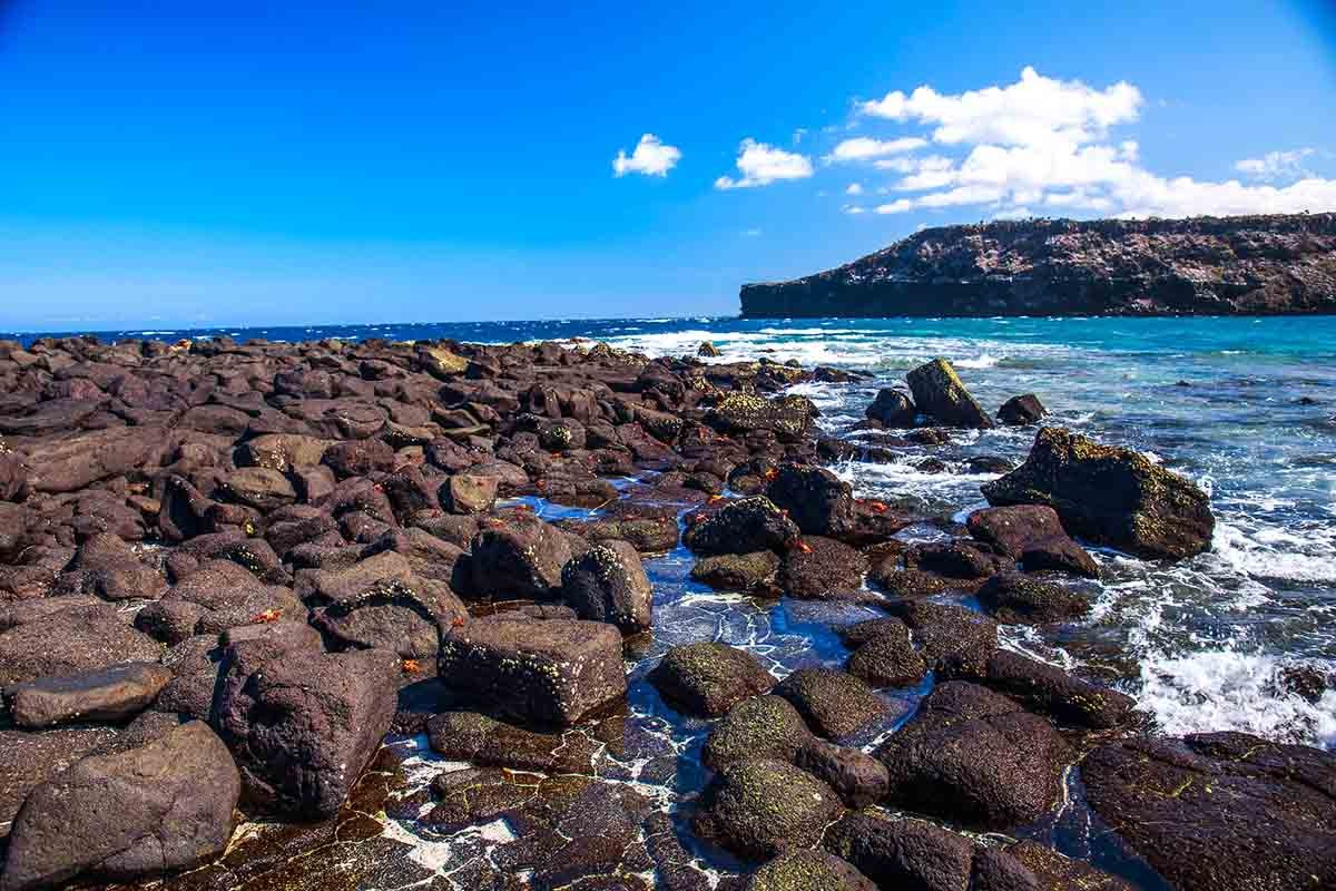 Mosquera Island | Galapagos | South America Travel