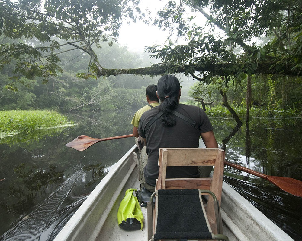 Napo Wildlife | Ecuador