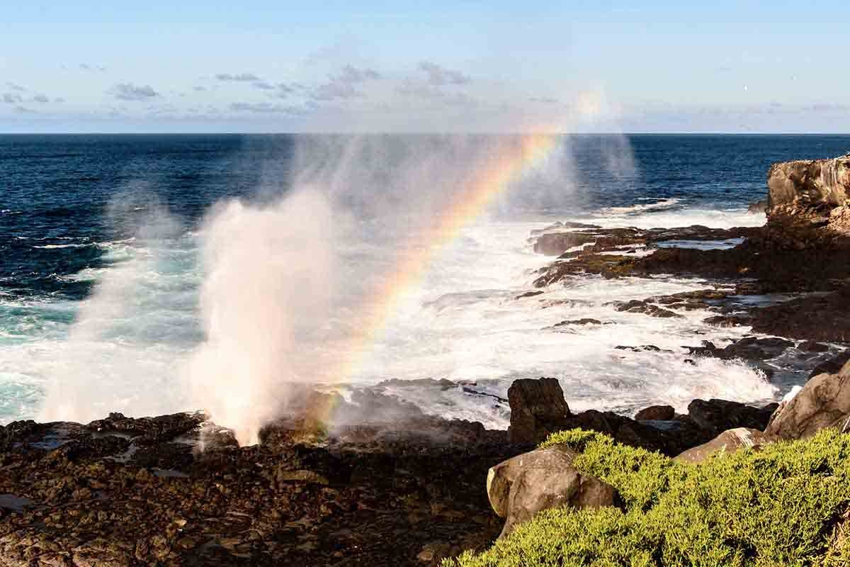 Suarez Point | Galapagos