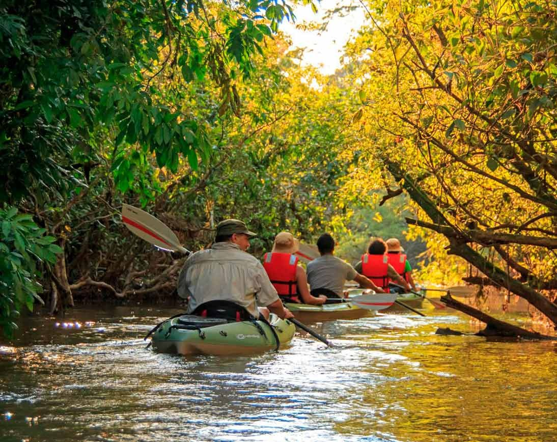 Amazon River Tour | Ecuador