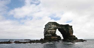 Darwin Island | Galapagos