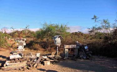 Post Office Bay | Galapagos Island