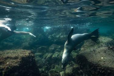 Witch Hill | Galapagos Islands - Islas Galápagos