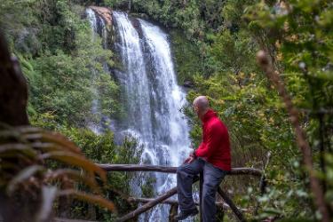 Pumalin park   Chile