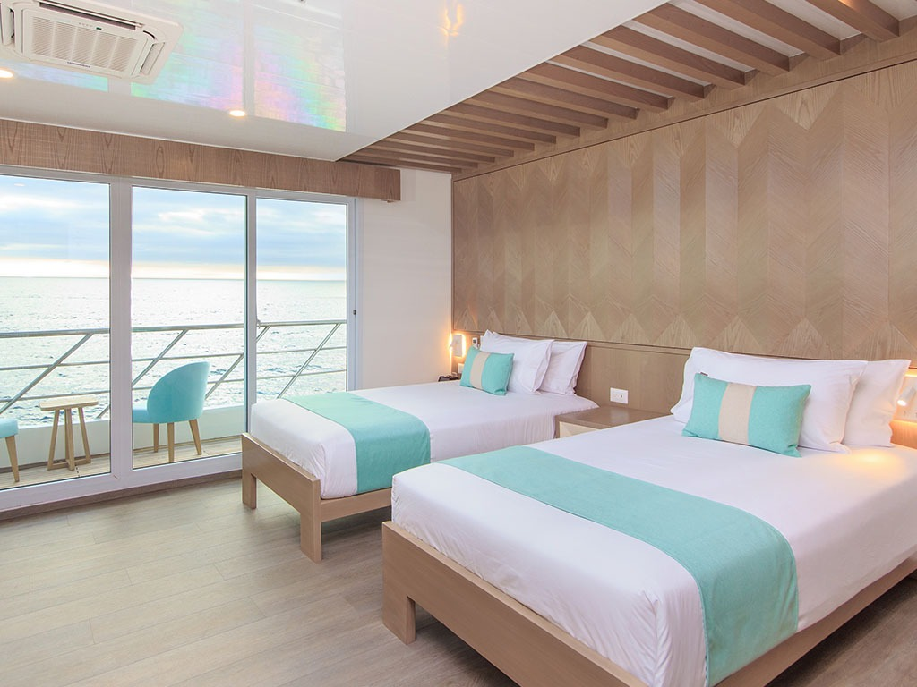 Suite   Endemic Catamaran