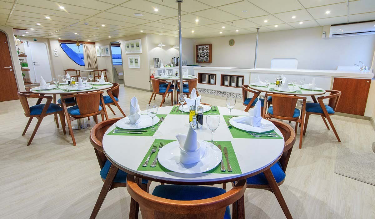 Dining area   Tip Top 5