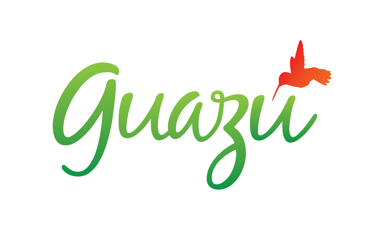 Guazú Travel