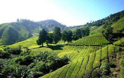 5 dingen op onze Maleisië bucketlist